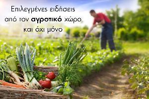 Η αγροτική κοινωνία ζει…